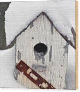 Winter Home Wood Print