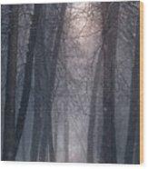 Winter Hush Wood Print