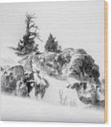 Winter Hwy 40 Wood Print