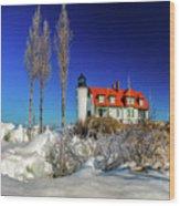 Winter Ice At Point Betsie Wood Print