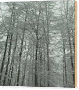 Winter In Germany Wood Print