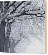 Winter In Our Street Wood Print