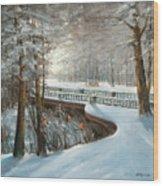 Winter In Pavlovsk Park Wood Print