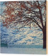 Winter In Peachland Wood Print