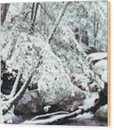 Winter In Shenandoah Wood Print by Thomas R Fletcher