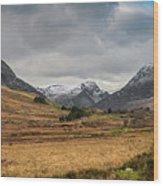 Winter In Snowdonia Wood Print