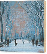 Winter In The City Park Wood Print