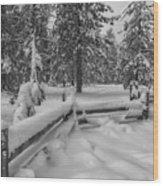 Winter In The Sierra Wood Print
