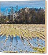 Winter In Washington Fields Wood Print
