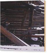Winter Inside Wood Print