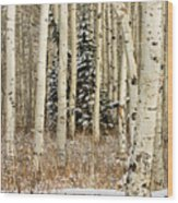 Winter Is Coming Wood Print