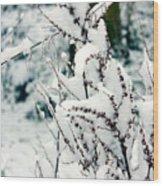 Winter Is Comming  Wood Print