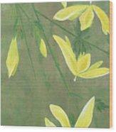 Winter Jasmine Wood Print