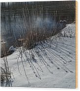 Winter Lake View Wood Print