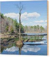 Winter Lake View Wood Print by George Randy Bass