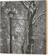 Winter Lamp Post Wood Print
