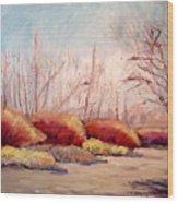 Winter Landscape Dry Creek Bed Wood Print