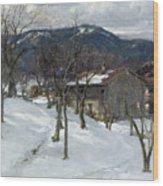 Winter Landscape Near Kutterling Wood Print