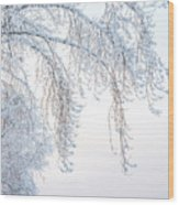 Winter Landscape With Snow-covered Trees Wood Print