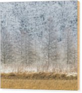 Winter Layers Wood Print