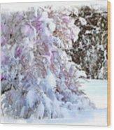 Winter Lilac Wood Print