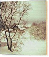 Winter Loneliness Wood Print by Jenny Rainbow
