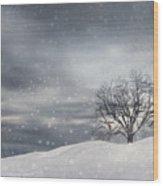 Winter Wood Print by Lourry Legarde