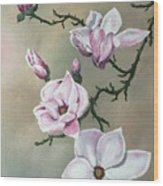 Winter Magnolia Blooms Wood Print