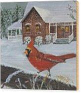 Winter Male Cardinal Wood Print