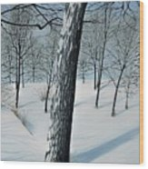 Winter Maple Wood Print