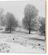Winter Memories Wood Print