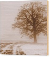 Winter Mist Wood Print