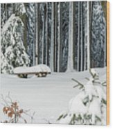 Winter Moments In Harz Mountains Wood Print