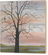 Winter Mood Wood Print by Shirley Lawing