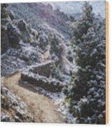 Winter Mountain Path Wood Print