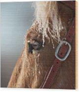 Winter Mustang Eye Wood Print