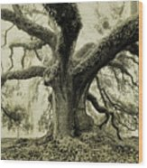 Winter Oak Wood Print