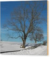 Winter On A Country Road Wood Print