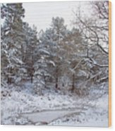 Winter On The Chase Wood Print