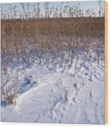 Winter On The Prairie Wood Print