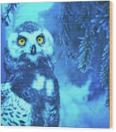 Winter Owl Wood Print