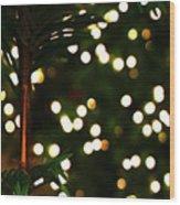 Winter Palm Wood Print