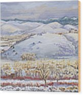 Winter Panorama From The River Mural Wood Print