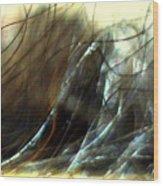 Winter Passage Wood Print