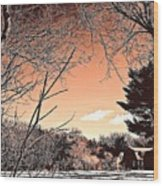 Winter Pastel Wood Print