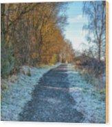 Winter Path In Scotland Wood Print