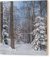 Winter Perfection Wood Print