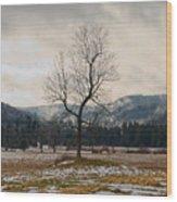 Winter Plains Wood Print