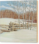 Winter Poplars 2 Wood Print