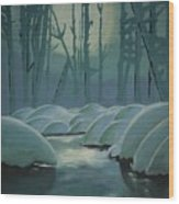 Winter Quiet Wood Print